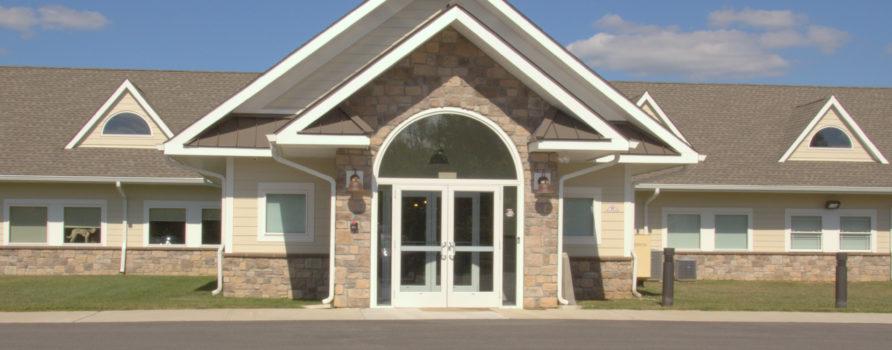 Marty S Place Senior Dog Sanctuary
