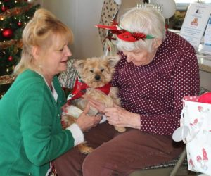 senior-dogs-senior-citizens-program
