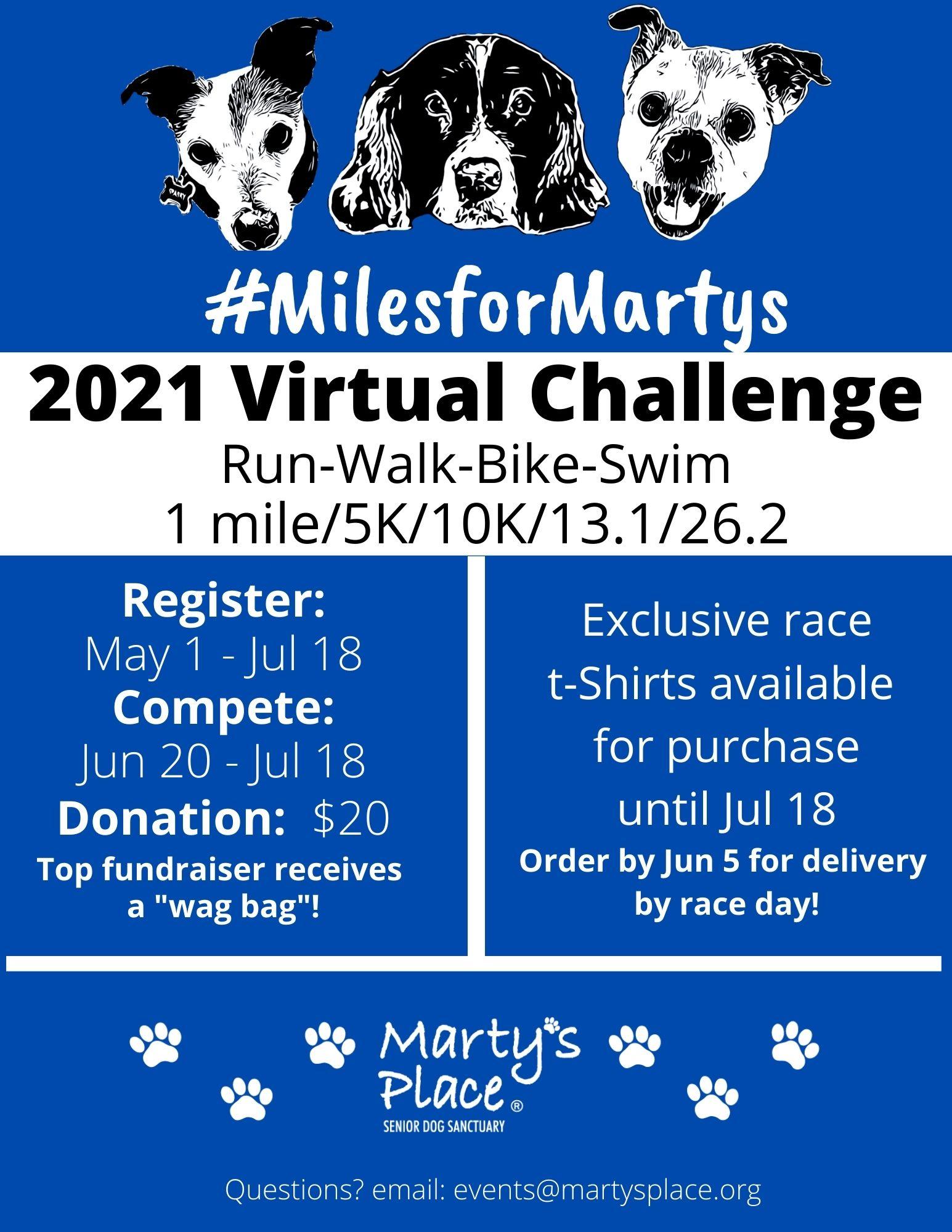 2021 Virtual Challenge